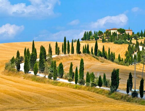 Walking Tours Tuscany Fields